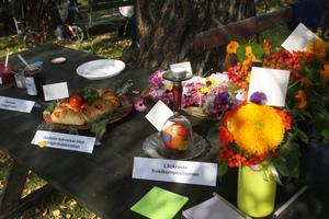 Bordet med tävlingsbidrag. Majoriteten barAnn-Kristine Frisk Berglunds signatur.
