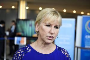 Utrikesminister Margot Wallström har tagit upp Fikru Marus sjukdomstillstånd med sin etiopiske motpart.