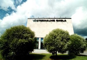 Västermalms skola, Sundsvalls gymnasium. Foto: Laura Leyshon.