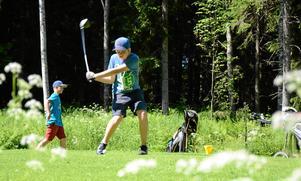 Dålig ekonomi är orsaken till att bolaget bakom Stjernfors golfklubb nu går i konkurs.Bilden är tagen under ett golfläger vid Stjärnfors golfbana.