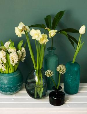 För ett symmetriskt blomsterarrangemang behövs varken identiska kärl eller blommor.I stället kan du utgå från en färg, som i denna vita komposition av hyacint (White King) tulpaner (Maureen och Mount Hood) samt allium (Mont Blanc).