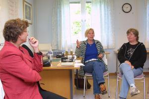 Susanne Eberstein fick många frågor av Elisabeth Engberg och Birgitta Danielsson.