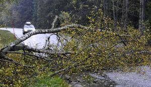 Fotograf: Johan Nilsson / TT. OBS: Bilden är tagen i sammanhang som inte har med artikeln att göra.