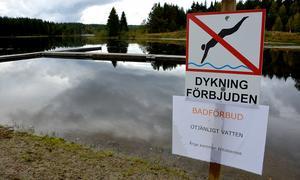 Torsvikens badplats har tidigare haft badförbud.