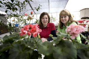 Ulrika Kristiansson och Carola Arnaryd som driver Hedvigs trädgård har på sistone fått lugna många oroliga kunder som undrar om de ska lägga ned.