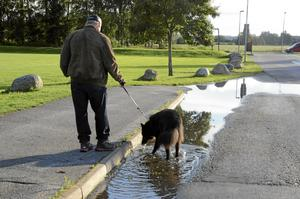 Bengt-Göran Björkgren med hunden Mixor pustar ut efter genomförd promenad.