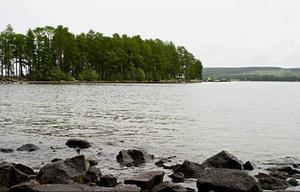 Mycket tyder på att vattnet kring Andersön nu är angripit av giftalger. En hund dog i helgen efter att ha badat i vattnet kring Andersön. Bara en timme efter badet var hunden död.