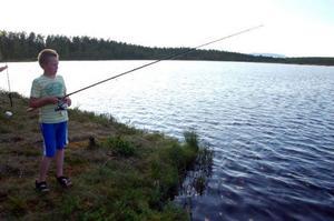 Emil Österman, 11 år, tycker om att fiska och fiskar ofta. Han hade dragit upp en aborre.Ida Österman, 3 år, var en av de yngre fiskarna och hade dragit upp två aborrar.