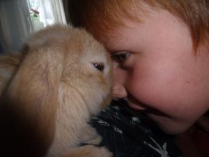 Alexandra har tagit kort på lillebror Oscar när han gosar med hennes kanin Jake.