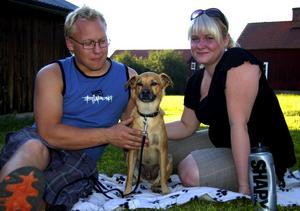 Ny familjemedlem. Tommy Hysing och Sara Hansson från Leksand, fick sin hund Pepe för en månad sedan. Han har redan hunnit blivit en självklar del av familjen. Foto:Jeanette Lundbeck