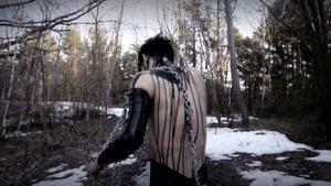 Skogstokigt. Barrskogstematiken är stark i nordisk Black Metal.