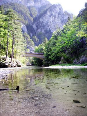 Vandringsleden från Hirschwang till Kaiserbrunn är en fin och tar cirka två timmar. Här rinner en bäck med bäckforell men det är förbjudet att fiska.