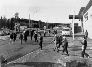 Bosvedjan 1980.
