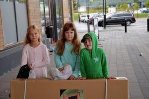 Alva Södermark, 8, Amanda Fandén,8, och Kevin Fandén, 7, med nyinköpt kaninbur.