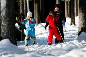 Eleverna på Fjällängsskolan åker jorden-runt-varv i skicrossbanan.Foto: Henrik Flygare
