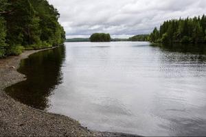 När Pernilla Persson åkte båt till Andersön i går var vattnet alldeles stilla och varmt. I sådana vatten trivs alger bra. Hon tror själv att det var på grund av alger i vattnet som en av hennes hundar dog efter att ha badat vid Andersön.