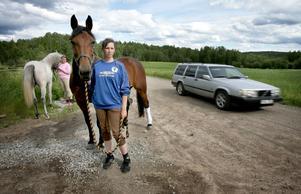 """Hotad och påkörd. """"Flytta på hästjäveln"""" skrek den äldre mannen hotfullt när de tvingats stanna längs vägen mellan Larsbo och Söderbärke i går eftermiddag. Emma Alexandersson gjorde vad hon kunde för att få sin häst lugn och ur vägen: """"Men jag fick inte en chans, tanten som körde bilen gasade på. Jag slängde mig ur sadeln i panik och sedan körde hon in i min häst""""."""