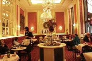 Café Sacher är ett av Wiens mest berömda kaféer.Foto: Hélène Lundgren
