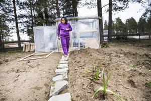 Pat har projekt i sin trädgård som hon gör själv. Så som att bygga små växthus och planteringar.