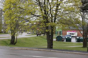 Det var här utanför Konsum Eken som mordförsöket ägde rum förra året.