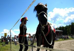 Natural horsemanship. En filosofi som går ut på att lära sig hantera och kommunicera med de fyrbenta vildarna. Foto:Staffan Alberts