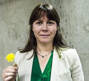 MP avvisar förslag på förslag från S.