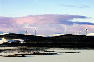 Regelkrånglet skulle bort, sa regeringen inför stundande storetablering av vindkraftverk. Men den proposition som nu ligger på riksdagens bord visar annat. Det blev som vanligt en kompromiss.