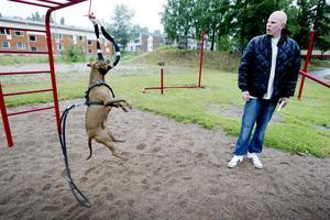 Mikael Arbinger anmäldes tidigare i veckan för djurplågeri. Nu vill han reda ut missförståndet – det är hundsporten spring pole han ägnar sig åt, och ingenting annat. Mikael tränar med sina hundar varje dag, och han berättar att han aldrig skulle kunna skada dem.