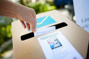 Namnomröstningen avslutas den 30 augusti.