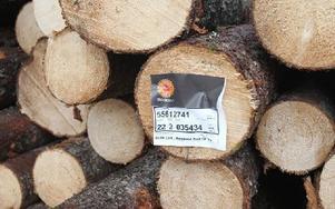 Värdefull skogsmark förvandlas med skogsskördares hjälp till kalhyggen. Här en del av det som avverkats och placerats intill en väg.