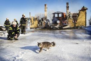 Den boende i huset hann rädda både hund och katter innan huset övertändes.