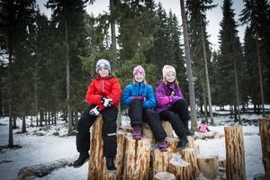 Erik von Essen, Hanna Svensson och Hanna Juhlin tivs på pyramidens topp.
