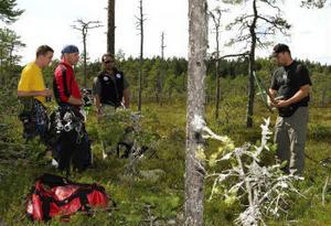 Anders Pettersson, Krister Selander, Mattias Boström och Peter Nilsson är lite besvikna för att inga ungar fanns i boet trots att ett par tidigare synts där. Nu verkar bara en av de vuxna fåglarna finnas kvar.