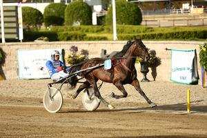 Ova A Lindqvist styrde Corroded till säker seger i andra loppet på Östersundstravet.