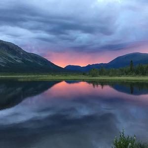 Månadens vinnare. En fantastisk kväll vid Lillsjön där vi fiskade öring och röding.