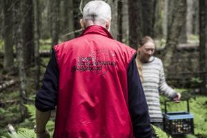 I Sverige finns cirka 300 svampkonsulenter organiserade i ett gemensamt förbund, men ännu fler är utbildade svampkonsulenter.