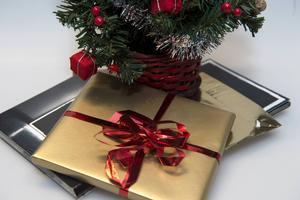 Årets julklapp blev även i år en pryl. Föga förvånande enligt Röda Korset som hade hoppats att ett matpaket till Syrien skulle vinna årets titel.