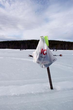 Vid de allra flesta rutor hängde kassar med fisk i väntan på att vägas in vid tävlingens slut.