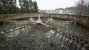 Avloppsreningsverket i Hallstavik, byggt på 1950-talet, behöver moderniseras för att klara dagens krav på utsläpp och rening.