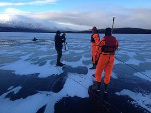 Älgräddning på Ottsjön med Järpens räddningskår. De lyckades inte att få upp den ur vaken.
