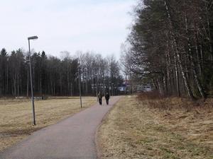 Lextorp i Trollhättan är ett område där de flesta övergrepp skett i offentligt miljö, på gator och i parker.