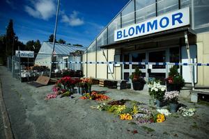 Den 27 augusti 2007 hittades blomsterhandlaren Staffan Arnström död i sin butik Bloméa handelsträdgård, utanför Örnsköldsvik.
