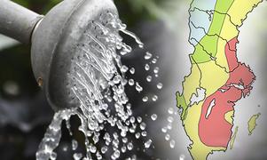 De små grundvattenmagasinen i Svealand har sjunkit med 20 centimeter, enligt Sveriges geologiska undersökning.