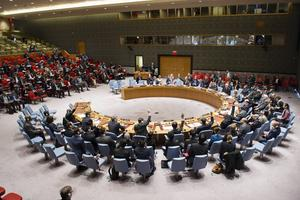 Om regeringen får som den vill tar Sverige plats vid det hästskoformade bordet i säkerhetsrådet efter årsskiftet.   Rick Bajornas/FN/AP/TT