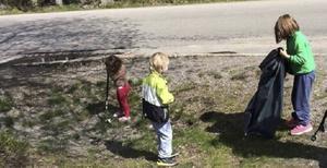 Hyresgästföreningen är på jakt efter skräpjägare.