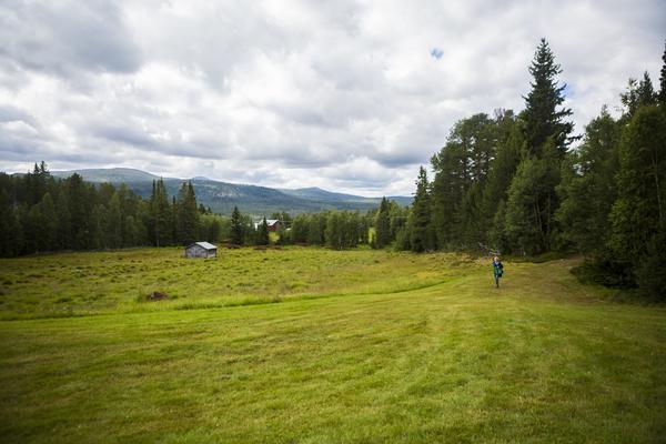 En fantastisk vacker utsikt över Lofsdalen.