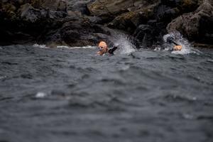 Bibben Nordblom skulle simma först i grissimmet, men när mer rutinerade simmaren Lotta Nilsson tyckte att hon var på väg åt fel håll tog hon kommandot och styrde dem rätt. Grissimmet blev dock det sista längre sim Lotta klarade av – efter att ha kommit upp ur det 1 400 meter långa simmet var hon ordentligt nedkyld.