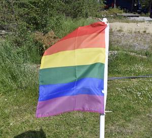 Regnbågsflaggan vajar runt om Haraldsängen.