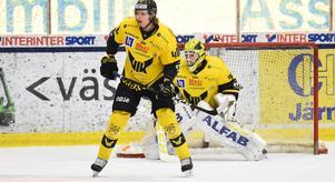 Jimmie Jansson tar större plats och syns mer i VIK Hockey mot slutet av säsongen.