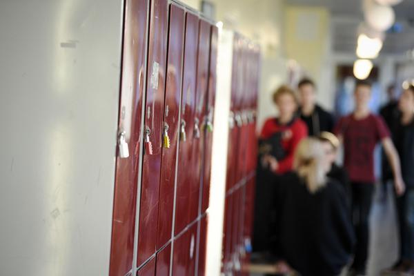 I framtiden kan svenskaskolor vara stängda för en del politiska partier enligt regeringens kommandelagförslag om politisk information i skolan.